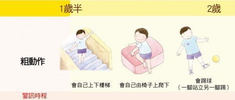 大致上肢體動作:1歲半-2歲