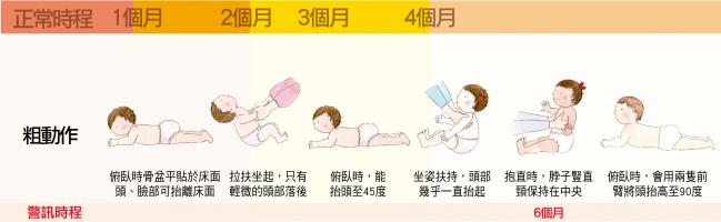 大致上肢體動作:1-4個月