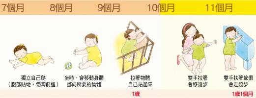 【大致上肢體動作】7-11個月