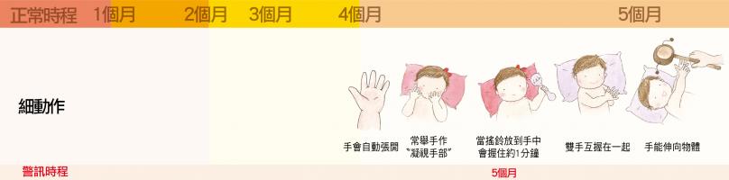 細部肢體動作【4個月】